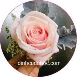 dạy cắm hoa theo chủ đề mở hiệu kinh doanh (10)