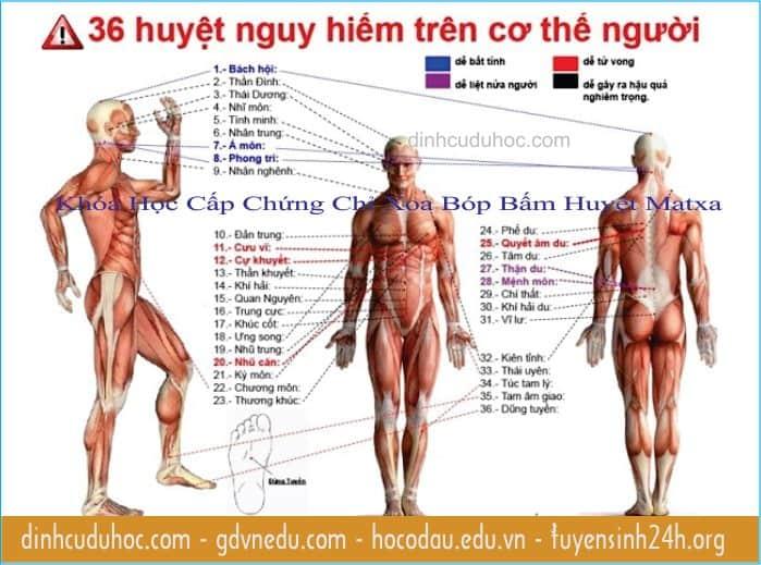 học xoa bóp bấm huyệt matxa vật lý trị liệu (8)